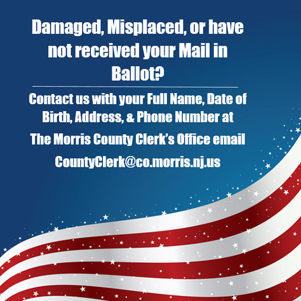 Did you receive your mail-in ballot?